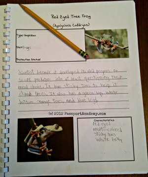 Costa Rican Notebooking page